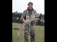 Jimmy Hain